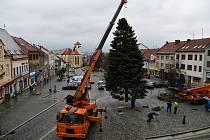 Boskovice mají vánoční strom. Náměstí ozdobila jedle ojíněná.