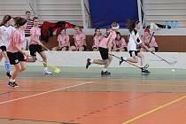 Prestižní finálový turnaj Mistrovství České republiky ve florbale středních škol hostila sportovní hala jedovnické průmyslovky.