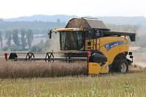 Slunečné počasí využili i zemědělci z Doubravické akciové společnosti a vyjeli s kombajny do polí. V okolí Doubravice nad Svitavou ve směru na Rájec-Jestřebí sklízeli řepku.