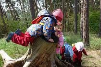 V Blansku vzniká lesní školka Lezem lesem, která by měla začít fungovat od září. Zakládá ji spolek rodičů Lesní klub Blansko. Děti budou trávit co nejvíce času venku. Naučit by se měli hlavně úctě k přírodě. Při výuce se bude dbát na jejich individualitu.