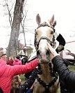 Blansko ožilo o víkendu Svatomartinskými slavnostmi.
