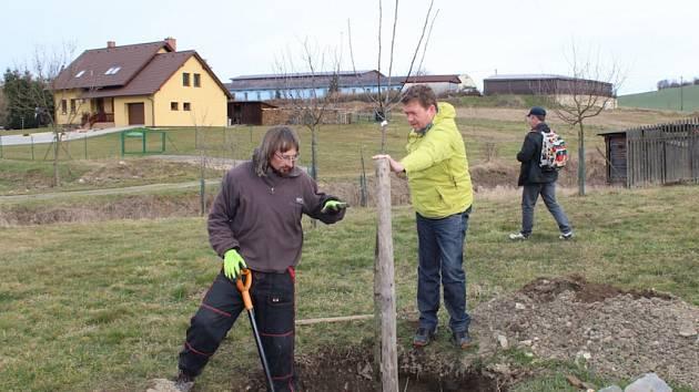 Akční skupiny se snaží podpořit výsadbu ovocných stromů. Oslovují obce, pořádají semináře a přispívají na výsadbu.