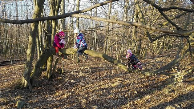Vladimír Vaněk z blanenského Klepačova má pět vnuček. Jedna je předškolačka a ostatní chodí na základní školu. Když se u Vaňků sejdou všechny, je o zábavu postaráno.