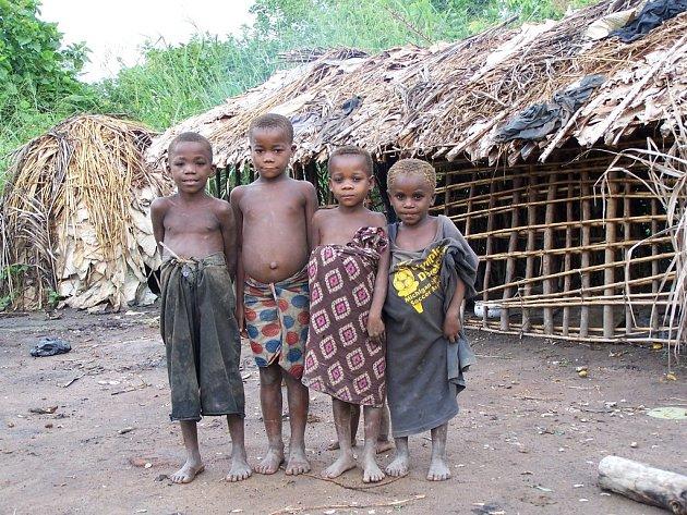 Malí Pygmejové. Děti, které ochotně pózují, dopoledne chodí do pralesa a pomáhají rodičům, odpoledne některé navštěvují školu.