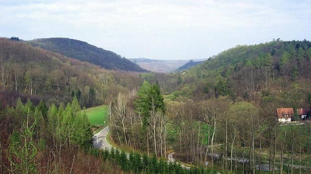 Školní lesní podnik Masarykův les ve Křtinách - ilustrační foto.