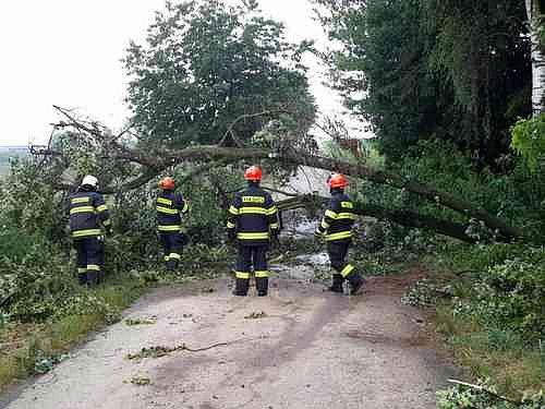 Více než čtyřicetkrát vyjížděli jihomoravští hasiči během čtvrtka odstraňovat následky bouřky v kraji.