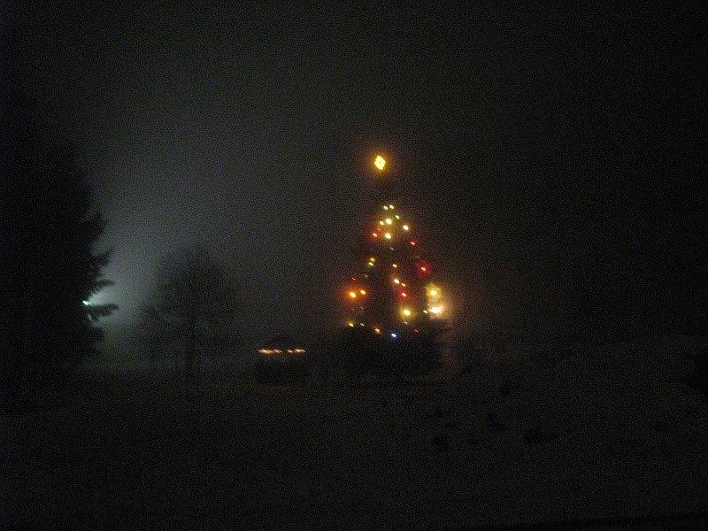 Vánoční strom  Krásensko