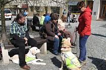 Třináctý ročník soutěže vodicích psů Cesta ve tmě tentokrát provedl účastníky centrem Boskovic.