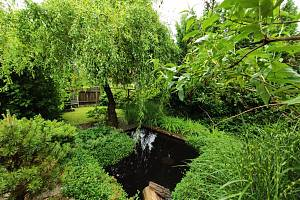 Při výletech po Boskovicku turisté rádi navštěvují i Borotín, kde se nachází vyhlášené arboretum.