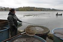 Ledová voda, bahno, déšť. Nebo mráz. Dva dny tvrdé práce v pachu rybiny. Výlov jedovnického rybníka Olšovce není pro padavky.