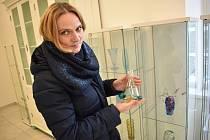 Vázy, skleničky, misky, dekorace. Odkaz sklářských mistrů, který pro řadu lidí nemá cenu a při vyřizování pozůstalostí často končí v popelnicích. Pro Annu Kaderkovou, která pochází z Velkých Opatovic, naopak poklad do její sbírky skla.