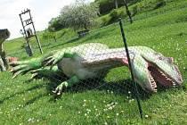 Dinosauři, kteří byli v Boskovicích k vidění dva roky, brzy zmizí.