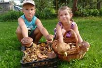 Houbaři na Blanensku v těchto dnech rozhodně nechodí z lesa s prázdnou. Rostou suchohřiby, praváci, růžovky, kuřátka, klouzci, babky a další dobré houby. Žádný houbař ovšem nechce prozradit, kde přesně jsou ta jeho místa.