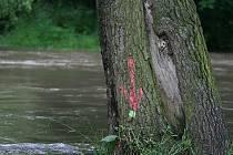 Rozvodněná řeka Svitava v Blansku.