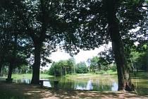 V olešnickém lesoparku odbahnili rybník. Vysadí i nové stromy