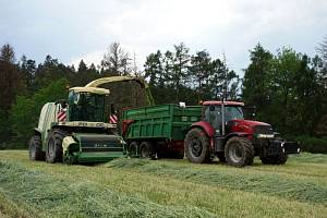 Problém narůstá, zemědělci se stále více potýkají s nedostatkem pracovníků. Chybí v živočišné výrobě i na polích.