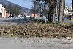 U blanenského vlakového nádraží začalo na tamním parkovišti kácení starých topolů. Nahradí je javory. FOTO: MĚSTO BLANSKO