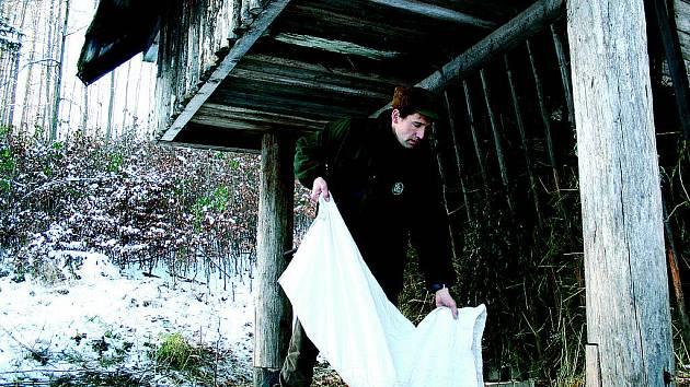 Ke krmelci v lese u Olomučan chodí pravidelně srnky, mufloni či divoká prasata.
