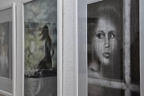 V letovické Galerii Domino vystavuje v těchto dnech své obrazy výtvarnice Libuše Müllerová.