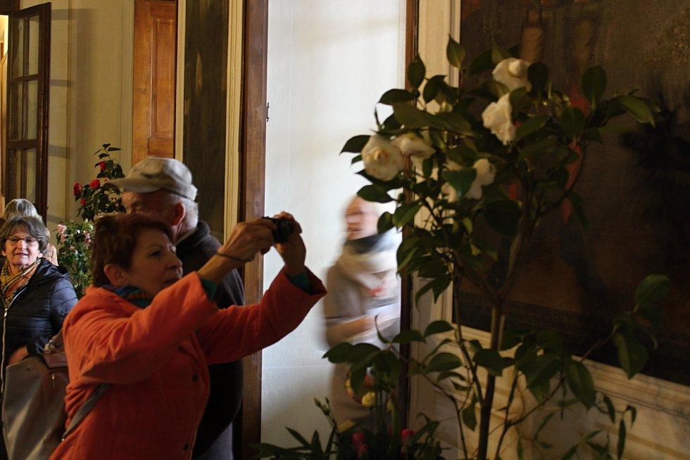 Výstava kamélií na rájeckém zámku.
