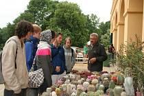Výstava kaktusů a sekulentů u loveckého zámečku na Pohansku
