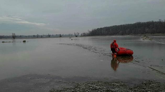 V úterý dopoledne vyráželi hasiči zachraňovat přimrzlou labuť.