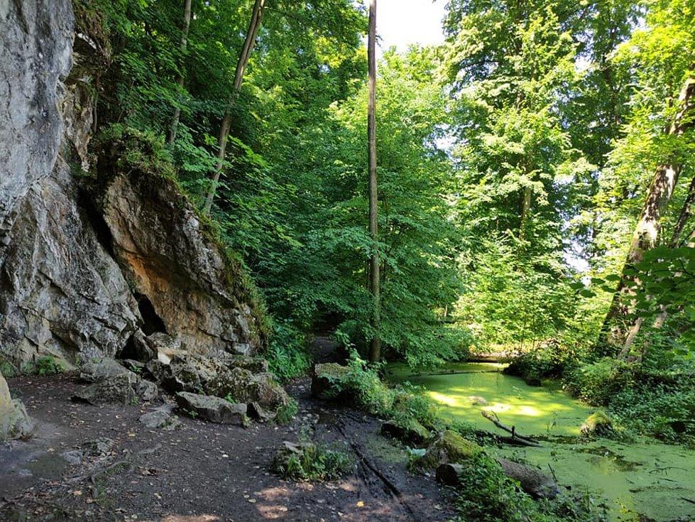 Z výletu do Nových Zámků v Litovelském Pomoraví. U jeskyně Podkova. Zde hraničí krasový vrch Třesín s rovinou moravské Amazonie.