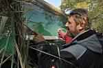 Na slavnostní  výlov Vrkoče u Pohořelic se přišly podívat desítky tisíc lidí, spořádají sedm tun rybích specialit.