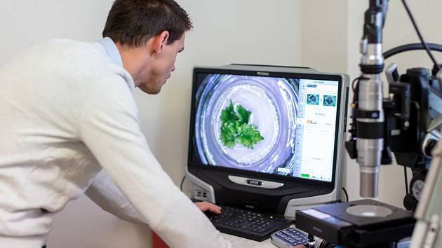 Nové laboratoře a přístroje za 17 milionů korun pomohou genetikům Zahradnické fakulty Mendelovy univerzity v Lednici se zkoumáním virů a bakterií.