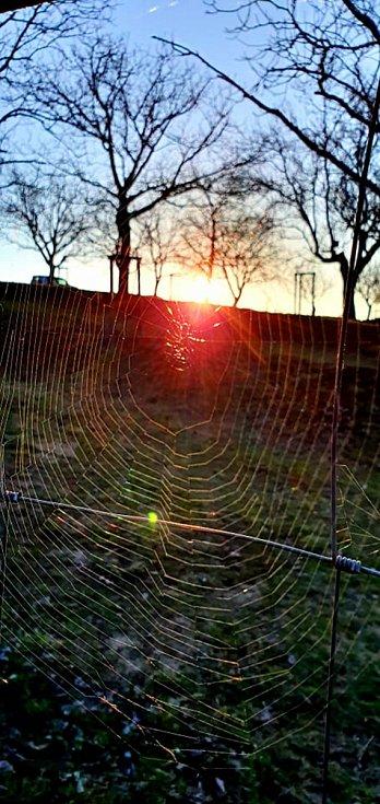 Kouzelná rána na Pálavě.