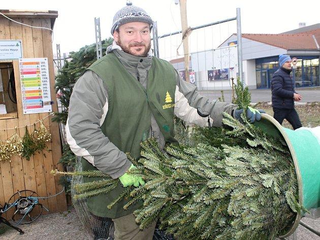 Jan Kurnát prodává stromy před jedním z břeclavských supermarketů. A to až do třiadvacátého prosince.