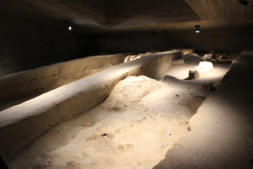 Nejcennější součástí místní sbírky je mamutí skládka. Pomocí videomapingu se návštěvníkům zvýrazňují jednotlivé součásti kostry mamuta.