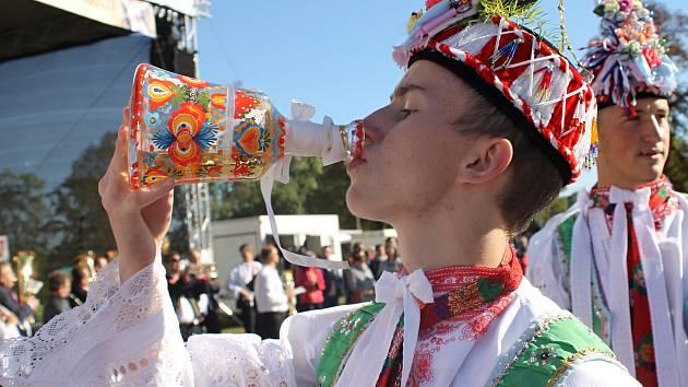 Třídenní Svatováclavské slavnosti v Břeclavi. Začaly tradičním stavěním máje, nechyběla hudební vystoupení ani nedělní krojová zábava.