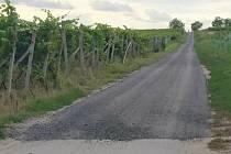 Cyklisté dojedou z Velkých Pavlovic až do Staroviček po nově zpevněné cestě mezi vinohrady.
