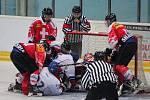 Čeští hokejisté (v bílém) dokázali proti Švýcarsku otočit zápas z 0:3 na 4:3.