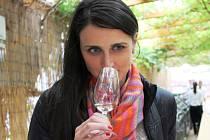 Letošní ročník výstavy vín Lednicko-valtického areálu nabídl více než sedm set vzorků.