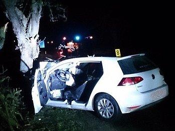 Řidič narazil do stromu o obce Ladná. Na místo dojeli hasiči i zdravotnická záchranná služba.