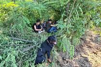 Migranti se snažili ukrýt v nedalekém křoví u dálnice poblíž Hustopečí.