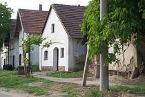 Sklepní lokalita Pod Předníma ve Velkých Bílovicích.