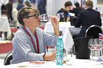 Hodnocení vín. Ilustrační foto