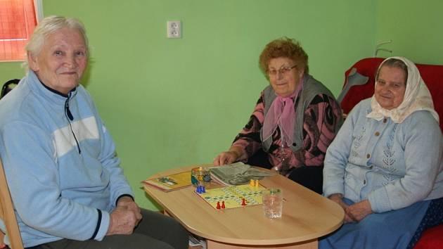 Domovinka v Němčičkách bude od prvního ledna obecně prospěšná společnost.