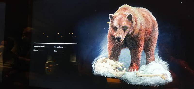 Atraktivní expozice Archeoparku Pavlov nabízí díky moderním audiovizuálním technologiím možnost putovat do pravěku všem generacím návštěvníků.