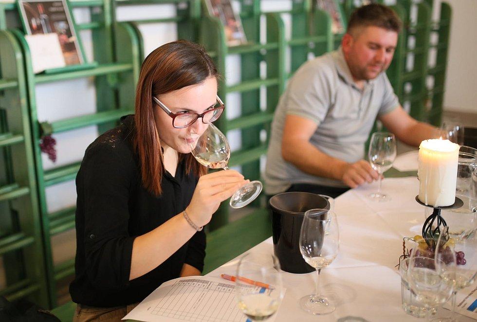 Degustátoři i zástupci města Břeclavi společně vybírali vína pro město Břeclav.