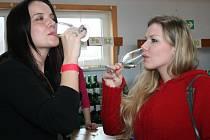 Maratón výstav vín na Břeclavsku začal i letos v Křepicích. K ochutnání tu první únorovou sobotu bylo více než 660 vín z širokého okolí.
