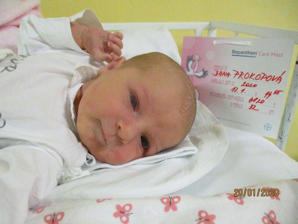 Dana Prokopová, Pavlov, 17. ledna 2020, 14.55, Nemocnice Břeclav, 52 centimetrů, 3820 gramů.