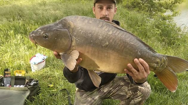 Kapr 98cm 11kg chycen v Bulharech svazová voda Dyje 4b.