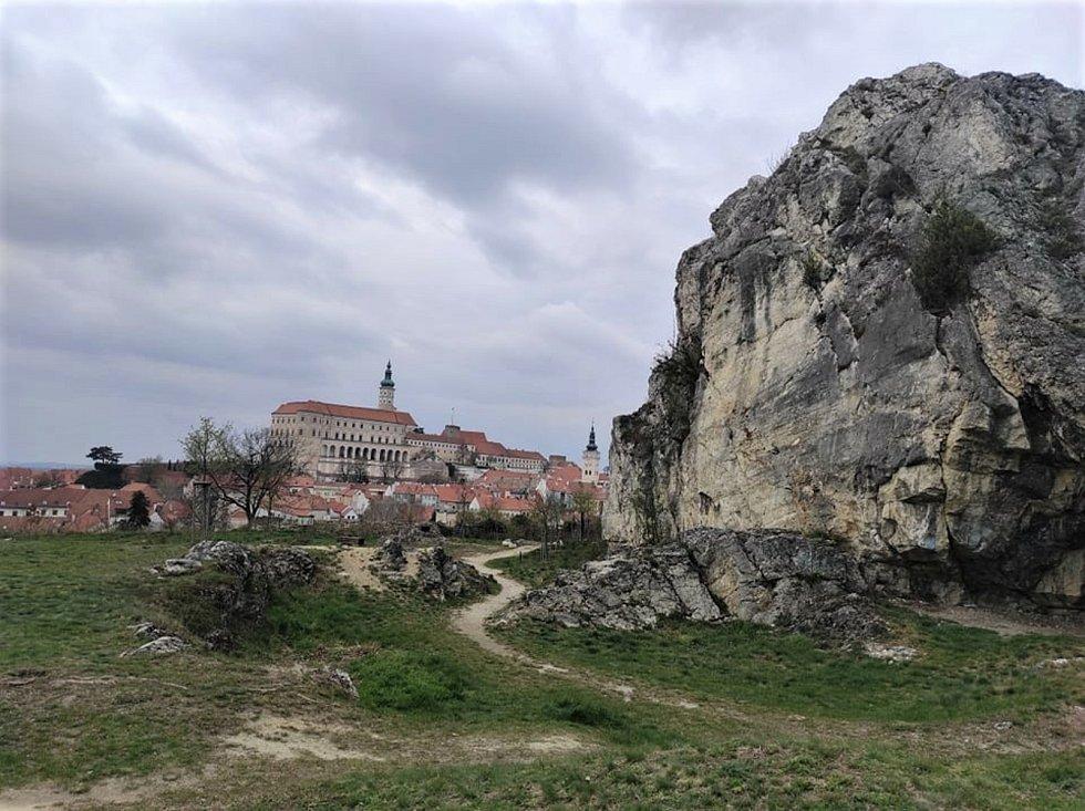 Dolní palouček pod Svatým kopečkem v Mikulově.
