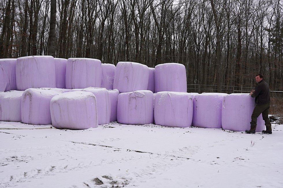 Balíků s potravou mají nachystaných v oboře ještě dost. Podle správce je ale zvěř do konce zimního období s přehledem zvládne spořádat.