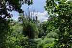 Z výletu do Nových Zámků v Litovelském Pomoraví. Obelisk z druhého břehu Moravy.