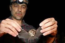 Evropská noc pro netopýry v jeskyni Na Turoldu.